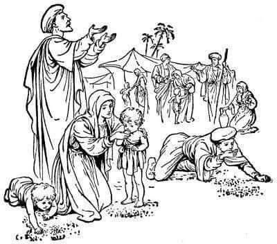 The Wonderbook Of Bible Stories Biblesnet Com